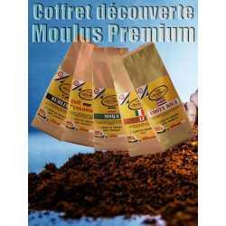 Offre découverte moulus Premium