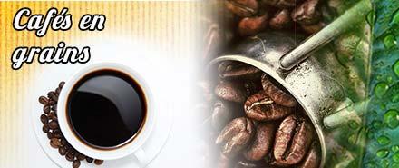 Cafés en grain le bonifieur